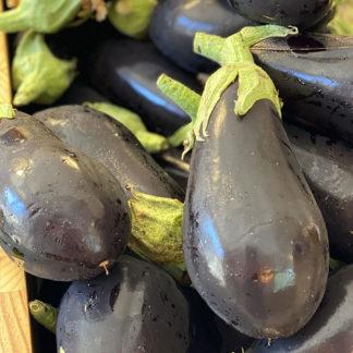 aubergine bio et locale