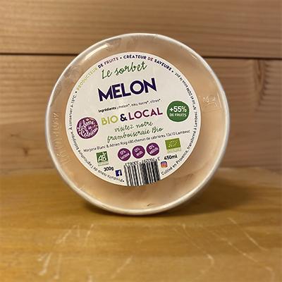 Sorbet melon 450g