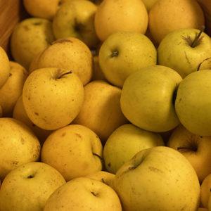 Pomme Golden Jardin de Gaïa bio
